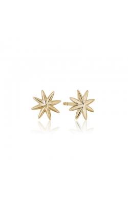 Graymoor Lane Designs Precious Metal (No Stones) Earrings ME00045Y product image