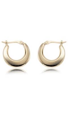 Carla/Nancy B Precious Metal (No Stones) Earrings 04/012 product image