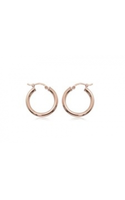 Carla/Nancy B Precious Metal (No Stones) Earrings 03/357R product image