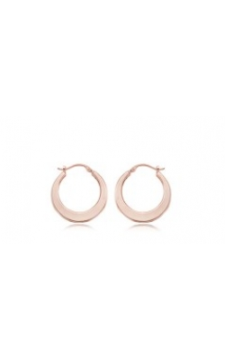 Carla/Nancy B Precious Metal (No Stones) Earrings 04/213R product image