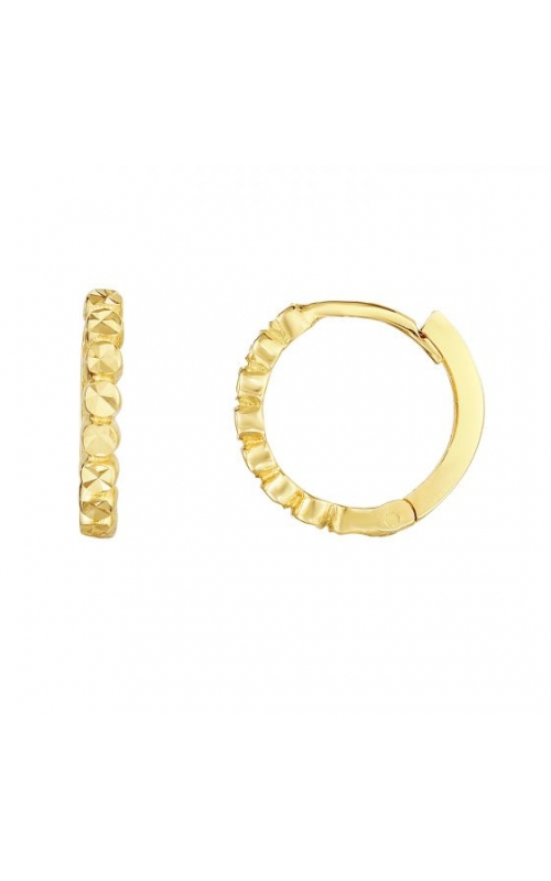 Royal Chain Group Precious Metal (No Stones) Earrings ER8635 product image